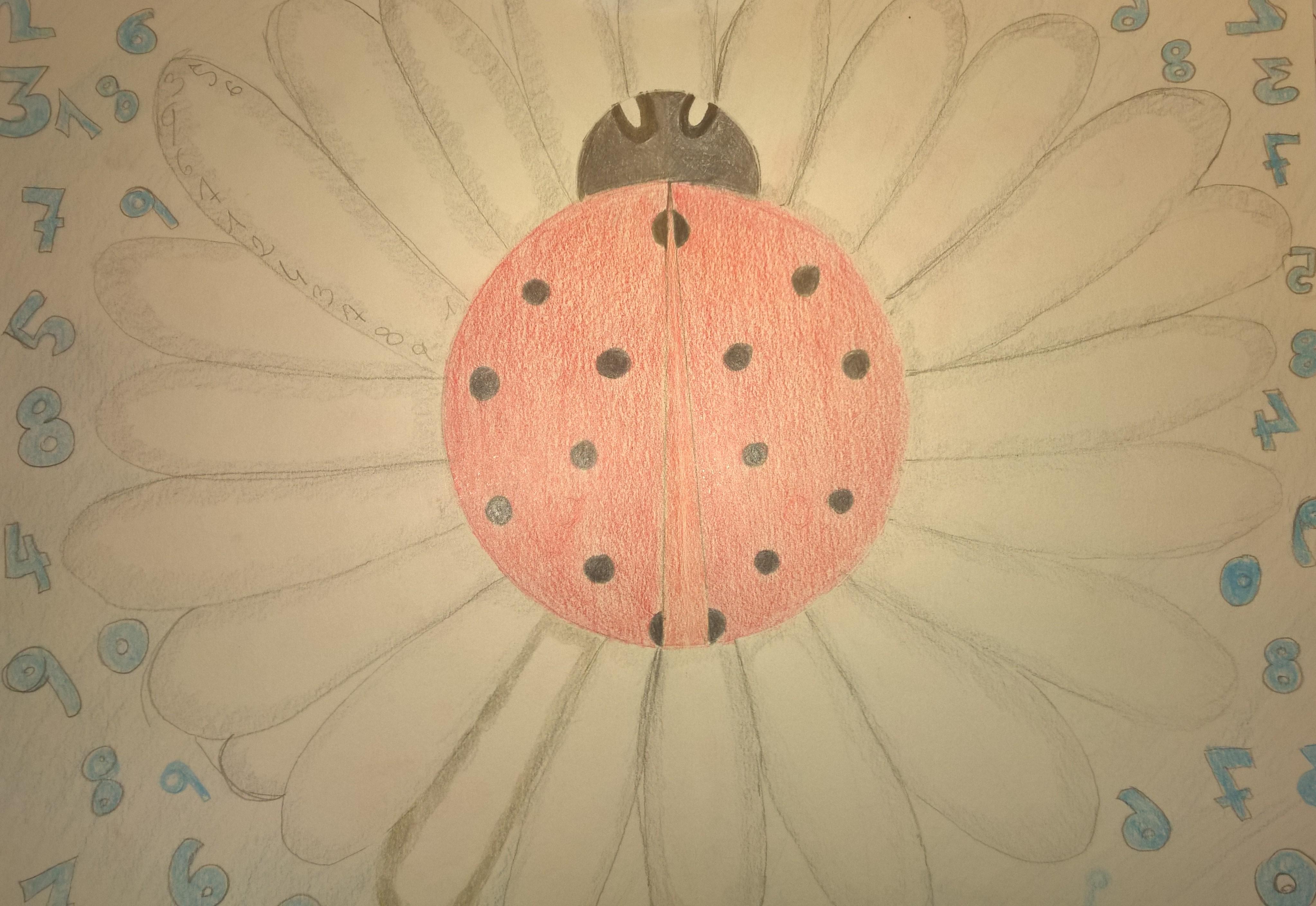 disegno di Chiara Olivio